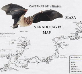 Venado Caves map